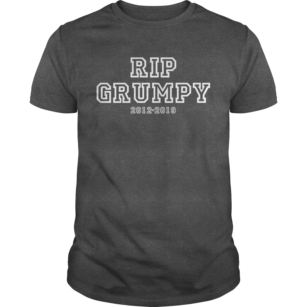 Rip Grumpy Cat Guys T-Shirt
